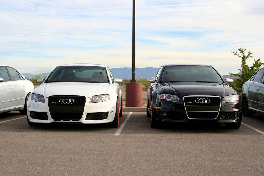 B7 Audi RS4 Grilles Pictures Amp Where To Buy Nicks Car
